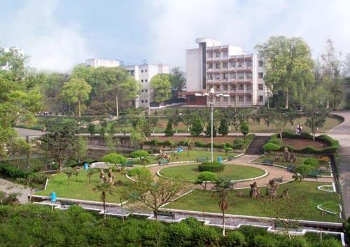 泸州市树风职业高级中学校2019年招生简章